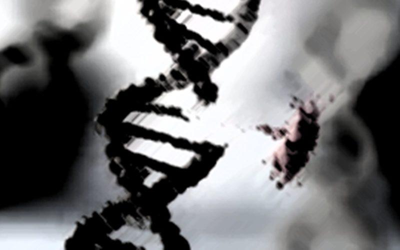 DNA error